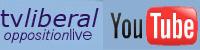 You Tube Portal der FDP